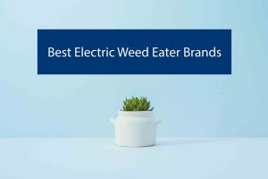 Best-Electric-Weed-Eater-Brands