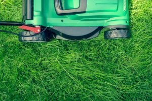 How-To-Find-The-Best-Push-Mower